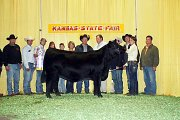 MacKenzie Flory's Angus heifer Lil Lady were named the supreme champion overall breeds heifer at the recent Kansas State Fair in Hutchison.