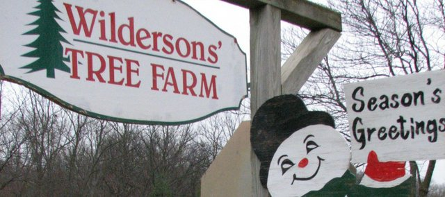 The Wilderson Christmas tree farm begins another holiday season.