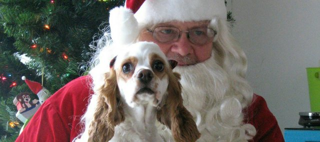Santa poses with Ruby, a Cocker Spaniel, on Saturday at Wagg'n Tails Day Spa.