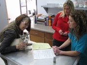 Jeannette Mercier hold Mr. Magoo on the vet table as Jamie Oberg and the veterinarian Kelly Lightfoot talk about the cat's medications.