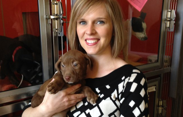 Rachel Hodgson is the chief communication officer for Great Plains SPCA.