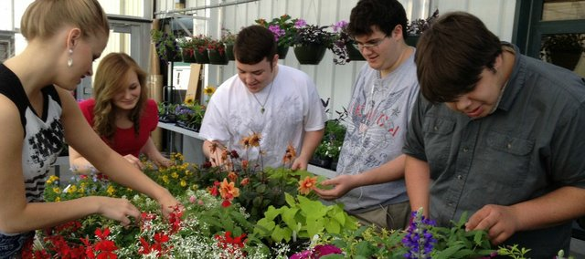 Makayla Weiser, Erin Krueger-Foster, Matt Higgins, Richard Zamora and Nathan Lucas, members of teh BLHS Horticulture club prepare for this week's plant sale.