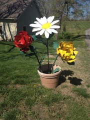 These flowers actually serve as a driveway marker for John and Connie Harrington.
