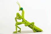 This Carolina praying mantis is one of 27 sculptures featured in Nature Connects 2 — a new exhibit of LEGO brick sculptures by New York artist Sean Kenney appearing at Powell Gardens from May 2 through Sept. 7, 2015.