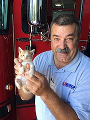 Tony Burr, Edwardsville EMS supervisor, holds the kitten that EMS staffers saved when a citizen brought it to the fire station, choking on a piece of chicken.