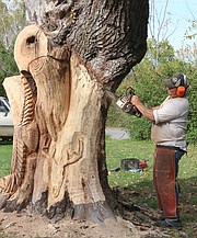 Robinson comes up with his designs on a whim, as each tree he carves is entirely different from the one before.