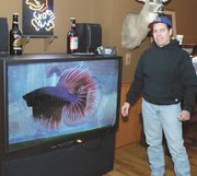 A big-screen beta swims across the family room television. Hiller has found that a good way to photograph his fish is by using a video camera.