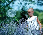 Kenneth Ritchey scouts flowers outside his home, looking for butterflies to complete his 4-H entomology project.
